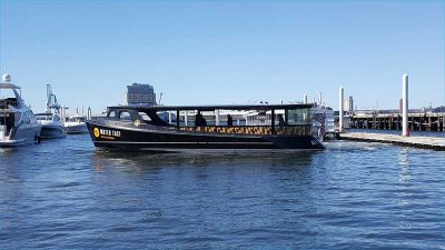 ap-designs-baltimore-water-taxi-wrap