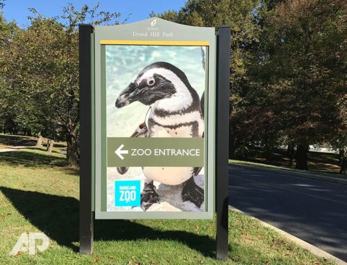 Maryland Zoo Signs
